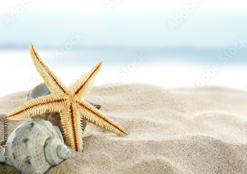 Fotografie, Obraz  Starfish on the Beach