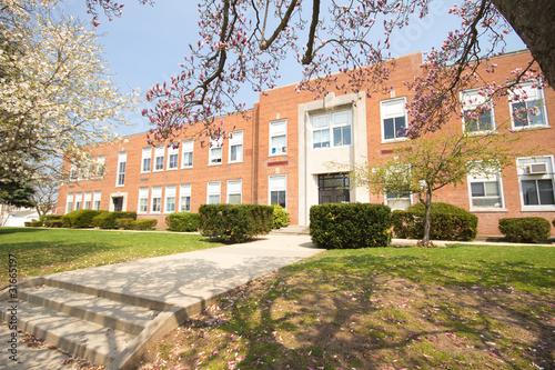 Fotografie, Obraz  Typical American Elementary School