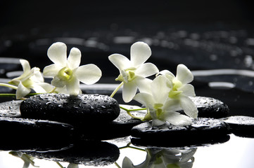 Naklejka Czarno-Biały Zen stones and white orchids with reflection