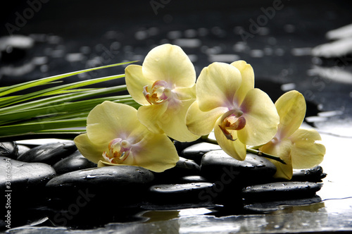 Foto auf Gartenposter Spa Spa still life with yellow orchid and stone reflection