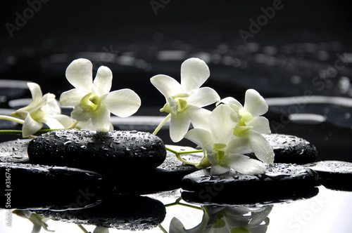 Foto auf Gartenposter Spa Zen stones and white orchids with reflection