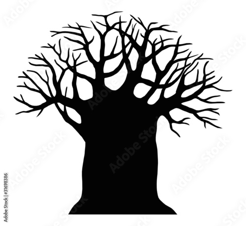 Photo  Silhouette of the baobab