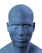 3D Render Of Males Head With Wireframe On Half
