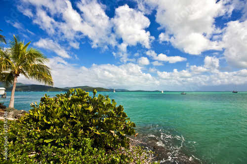 Airlie Beach Lookout Wallpaper Mural