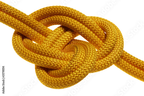 apocryphal knot on double yellow rope Wallpaper Mural