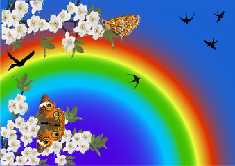 Plakat flowers and butterflies on rainbow background