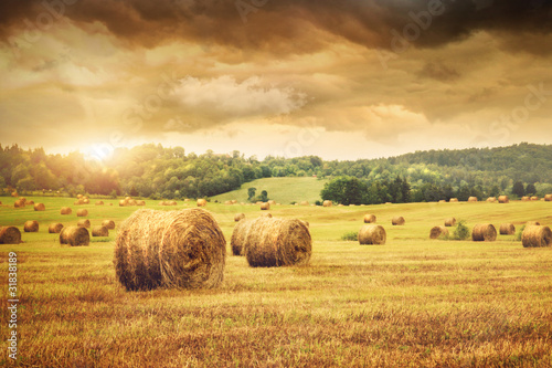 Poster Oranje Field of freshly bales of hay with beautiful sunset