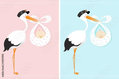 Obraz na plátně Stork With Baby