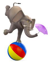 Elephant Cartoon On Ball Plus ...