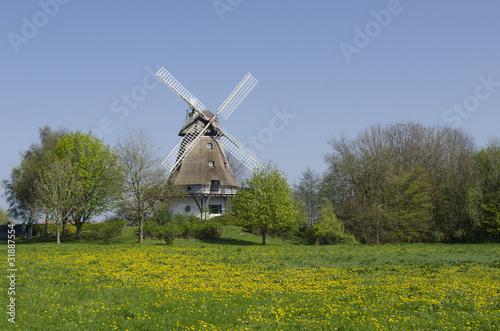 Tuinposter Molens Windmühle in Bobeck, Schleswig-Holstein