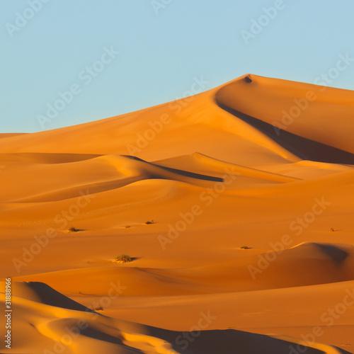 Deurstickers Marokko Dunes at Sunrise - Awbari Sand Sea, Sahara Desert, Libya