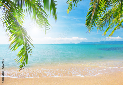 Foto-Kissen - Palm and tropical beach (von Alexander Ozerov)