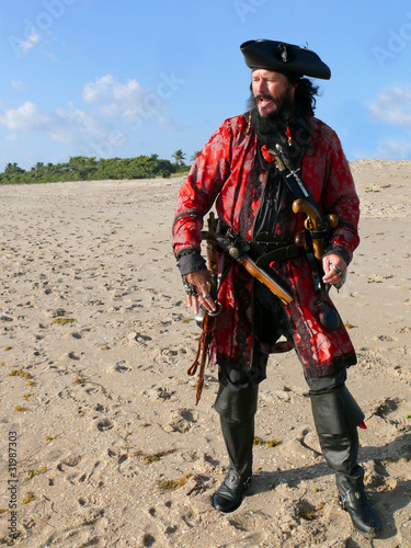 Fotografie, Obraz  Full Length Costumed Pirate on the Beach