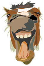 Vector Illustration Of The Laughing Horse