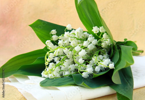 Wall Murals Lily of the valley lovely bunch of lily of the valley on a stone background