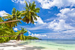 canvas print picture - seychelles plage cocotier