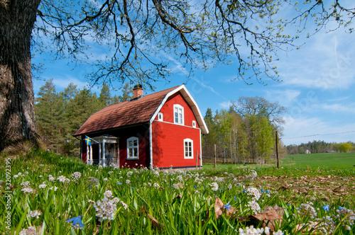 Fotografía  Schweden