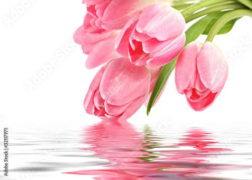 Obraz Różowe tulipany z odbiciem w wodzie - fototapety do salonu