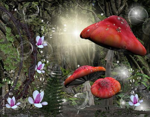 Zastosowanie fototapet polana-w-srodku-lasu