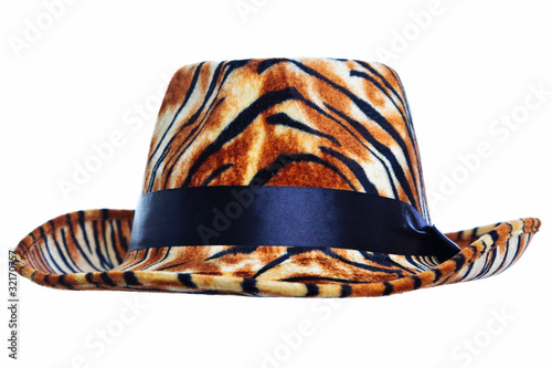 Tiger hat cut out Tablou Canvas