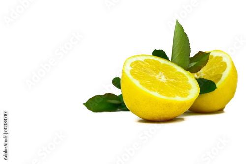 Cytryny z liściem #008