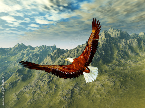 Poster Aigle eagle in the mountains