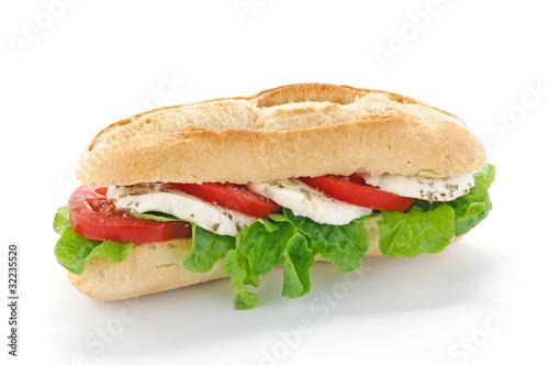 Fotografie, Obraz  Panino con mozzarella, insalata e pomodoro