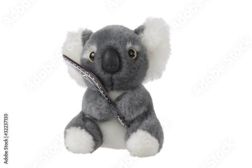 Garden Poster Koala Cute Koala Toy