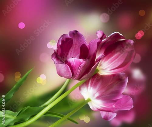 Plakat Kwiaty. Rocznicowy projekt karty