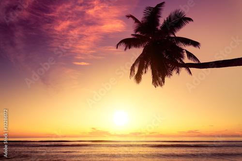Fototapety, obrazy: Seychelles couché de soleil