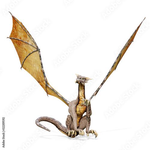 dragon sit