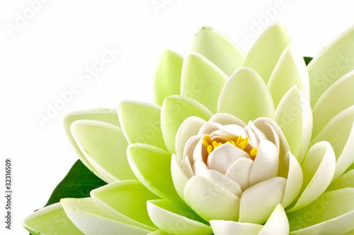 Garden Poster Lotus flower fleur artificielle nénuphar blanc