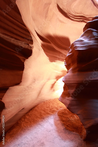 Photo Stands Canyon Antelope
