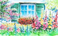 Window Into The Garden