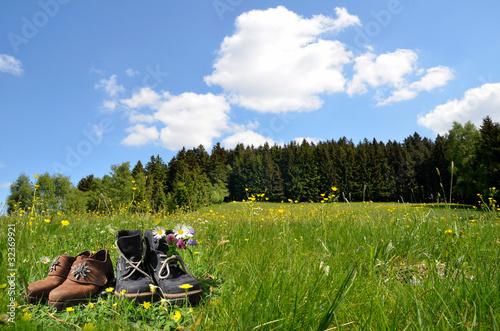 Foto  Wandern Wanderschuh Blumenwiese