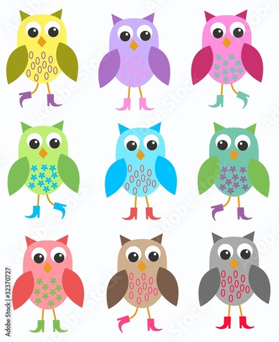 Poster Vogels, bijen colourful owls