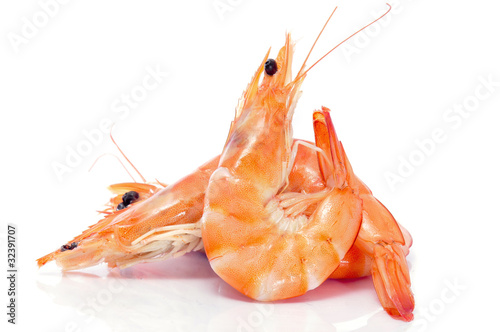 Aluminium Prints Seafoods shrimps
