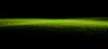 Green Lawn At Night