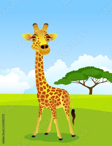 Photo  giraffe cartoon
