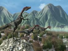 Prehistoric Scene With Compsog...