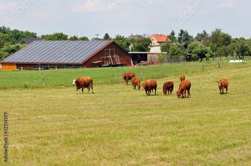 Foto  Bauernhof
