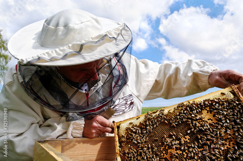 Working apiarist. Canvas Print