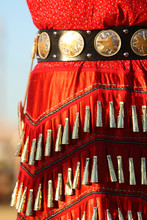 Jingle Dress Details
