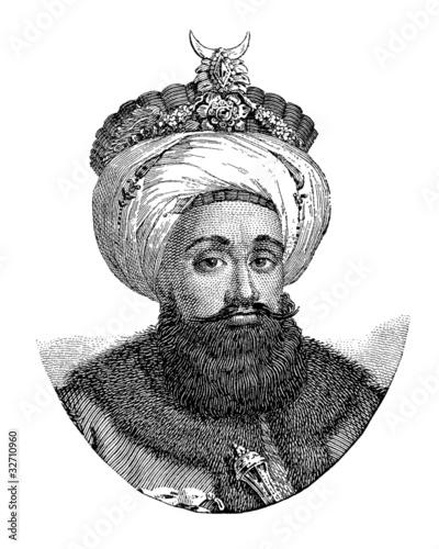 Obraz na plátně Sultan