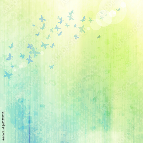 Garden Poster Butterflies in Grunge grunge background with butterflies