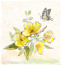 Yellow Field Flowers And Butterfly