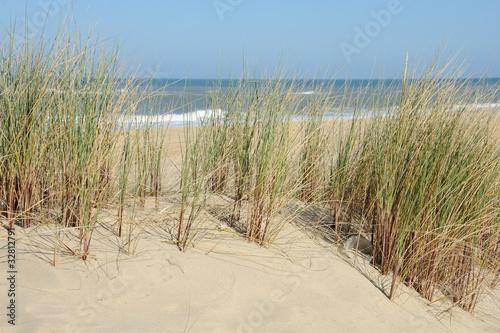 dune et océan 2 © Guy Pracros