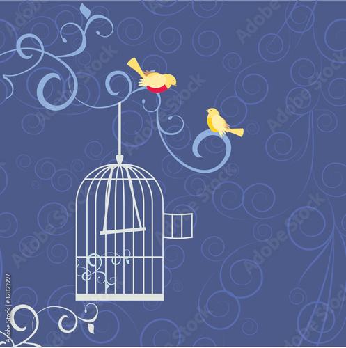 Poster de jardin Oiseaux en cage two birds in love out from cage