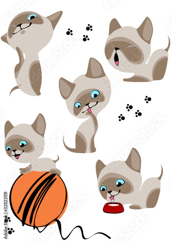 Deurstickers Katten cheerful Siamese kittens 2. Similar in a portfolio
