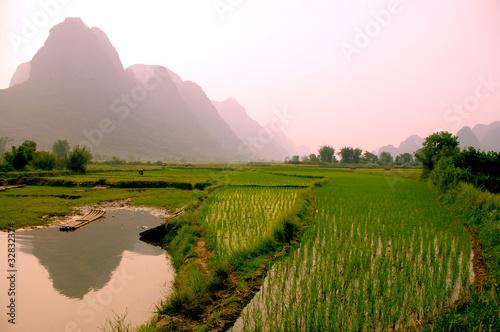 Foto op Aluminium Guilin yangshuo landscape - rice field